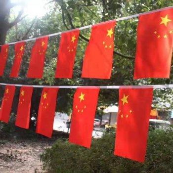 济南高档中国国旗定做 特殊尺寸